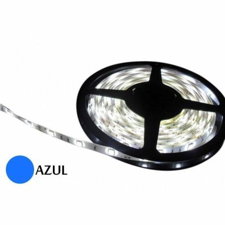 Tira de LED 12 V interior 5 metros (3528) 60 led por metro