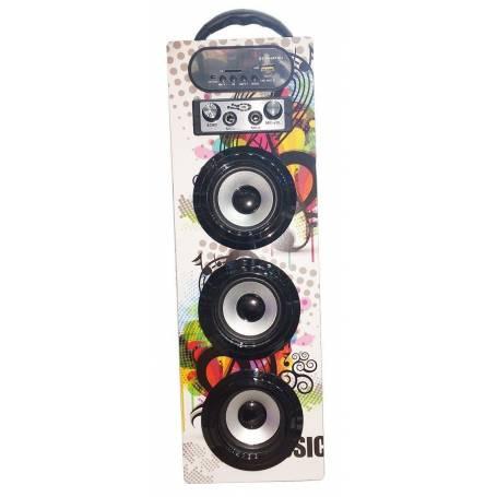 Parlante BLUETOOTH Karaoke Daihatsu D-S30BT control remoto