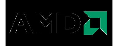 Micros AMD